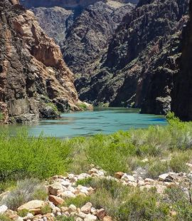 Colorado River at Bottom of Grand Canyon