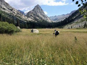 Trans-Sierra trail to Mt. Whitney Big Wet Meadow